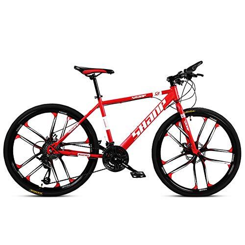NENGGE 24 Inch Mountain Bikes, Dual Disc Brake Hardtail Mountainbike, Heren Vrouwen Hoog koolstofstaal Alle Terrein Alpine Fiets