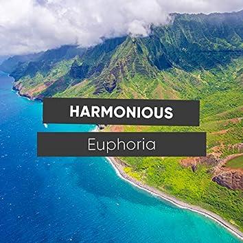 # Harmonious Euphoria