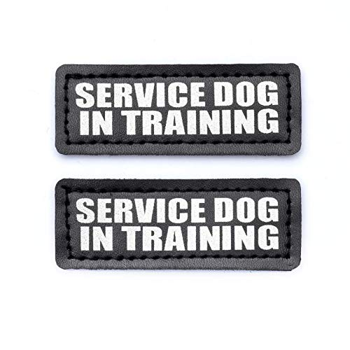 Industrial Puppy Hook Patches for Harness - Service Dog, Emotional Support, in Training, Service Dog in Training, and Therapy Dog Patches (Service Dog in Training, XS - 2 x 1)