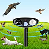 10. Clever sprouts Dog Cat Repellent, Ultrasonic Animal Repellent with Motion Sensor and Flashing Lights Outdoor Solar Powered Waterproof Farm Garden Yard Repellent, Cats, Dogs, Foxes, Birds, Skunks, Rod