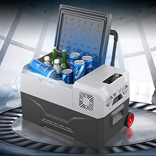 LIXUDECO Mini Nevera 30/40 / 50L refrigerador Auto-refrigerador 12V Portátil Mini refrigerador Compresor Refrigerador Refrigerador Frigorífico Camping Nevera Portatil (Color Name : 30L Car Home Use)