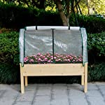 LYNSLIM PE Greenhouse Cover + Solid Wood Raised Elevated Garden Bed Planter Box for Vegetables/Flower/Fruits Herb Grow… 9 1.100% Natural Cedar Wood:This natural raised garden bed is made of non-paint, non-toxic 100% fir wood, which is known for its strength and dimensional stability as well as its natural resistance to rot and pests. 2.PE Greenhouse Cover Protects: The complete gardening kit to maximize your growing season. 3.Solid & Ample:Our raised bed provides gardeners with adequate and sturdy planting area which can hold up to 100Kg/220Lb.