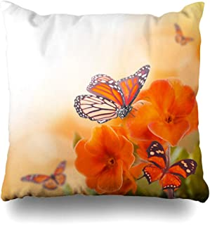 Ahawoso Throw Pillow Cover Square 20x20 Potted Orange Meadow Yellow Flowers Butterfly Spring Primrose Nature Green Blooming Bright Photography Summer Design Pillowcase Home Decor Cushion Case