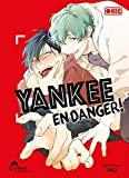 Yankee en danger ! Tome 01 - livre (manga) - yaoi - hana collection