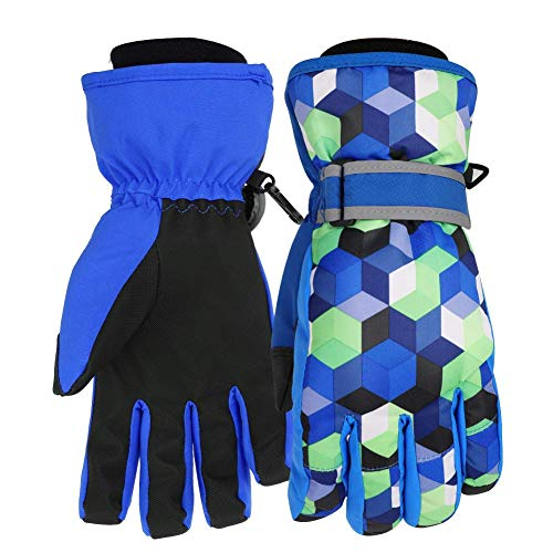 Waterfly Ski Gloves for Men Women Winter Snow Waterproof Windproof TPU Gloves Snowboard Snowmobile Skiing (Black06, M)