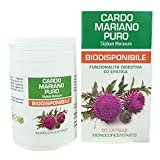 Cardo Mariano Puro Naturpharma 50 Vegan capsule da 500 mg di Estratto Puro | Titolato al 80% in Silimarina