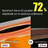 Immagine 2 aklot concerto ukulele solido mogano