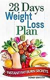 28 DAYS WEIGHT LOSS PLAN: INSTANT FAT BURN SECRETS