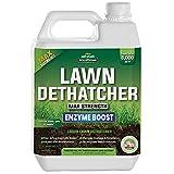 PetraTools Liquid Dethatcher, Lawn Dethatcher & Aerator, Grass Dethatcher & Thatch Rake Alternative, Thatch Remover, Liquid Thatch Remover, Lawn Dethatch Product, Lawn Dethatching Solutions (32 Oz)