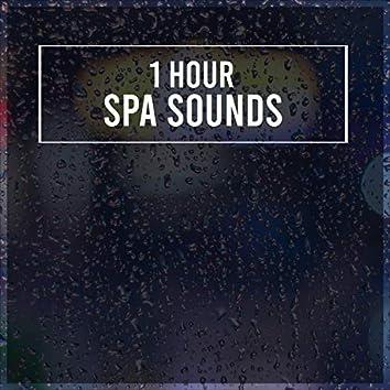 1 Hour Spa Rain Noises to Sleep Easy
