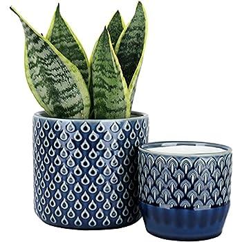 Best blue ceramic pots Reviews