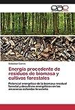 Energía procedente de residuos de biomasa y cultivos forestales: Potencial energético de la biomasa ...
