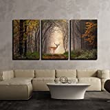 wall26 - 3 Piece Canvas Wall Art - Fallow Deer Standing in a Dreamy Misty Forest, with Beautiful Moody Light - Modern Home Decor Stretched and Framed Ready to Hang - 24'x36'x3 Panels