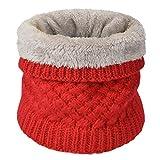 heekpek Calentador De Cuello De Punto Para Mujeres y Hombres Bufanda De Invierno De Doble Capa Forrada Con Forro Polar (Rojo)
