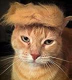 Fuji Peluca de gato para mascotas Disfraces de cabeza de perro, ropa para Halloween, Navidad, fiestas, festivales