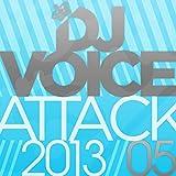 DJ Voice Attack 2013/05