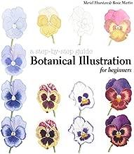 botanical illustration for beginners