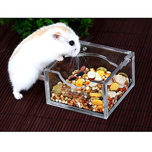 Feeder Hamster - Acryl Kleine huisdier Hamster Voedsel Water Bowl Feeder Clear Feeding Schaal - Hamster Konijn Hamster Feeder Bed Gift Voedsel Varken Hamster Vogel Fruit Voedsel Hamster Bowl Guinea Voedsel
