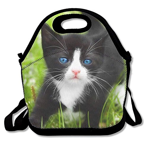 Cats-and-kittens-black-and-white Waterproof Reusable Lunch Bags Boxes For Men Women Adults Kids Toddler Nurses With Adjustable Shoulder Strap - Best Travel Bag