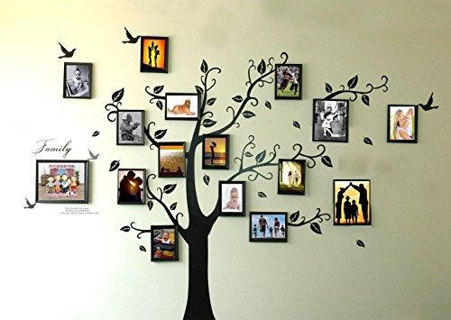 Rainbow Fox Grote zwarte fotolijst 8 foto's bevatten op takken en vogelmotief (180 cm x 250 cm) Art muurschildering stickers en 180 stickers voor woonkamer, kinderslaapkamer