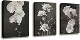 Canvas Wall Art Contemporary Simple Life White Flower Calla Lily Painting Bedroom Decor - 3 Panels Framed Canvas Prints Black and White Style White Floral HD Pictures for Home Office Bathroom Decor