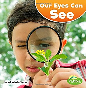 Our Eyes Can See  Our Amazing Senses