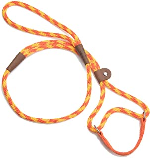 Mendota Pet Dog Walker, Martingale Style Leash - Leash & Collar Combo, Made in The USA - Amber, 3/8 in x 4 ft - for Small/Medium Breeds