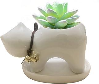 MiDanggu Tiny Ceramic Pot Planter for Cactus Succulent Herb Plant Office Desk Windowsill Decoration Pen Holder Gift (Stand...