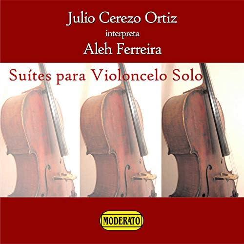 Julio Cerezo Ortiz