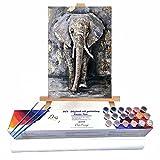 Qegyxk Elefante Animal Pintar por Numeros Adultos Niños DIY Pintura por Números con Pinceles y Pinturas 30x45cm Sin Marco