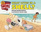 what lives in a shell