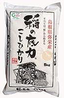 島根県産 お米 稲の底力こしひかり 5kg