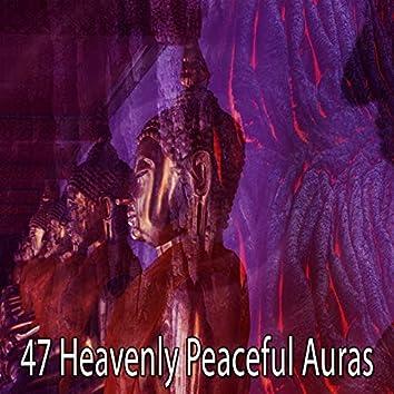 47 Heavenly Peaceful Auras