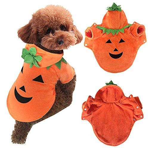 AIYUE® Ropa Mascotas Traje Disfraz Halloween Navidad Perros Pequeños Sudadera Capucha Abrigo Chaqueta Invierno Otoño Cachorros Camiseta para Perritos Gatos