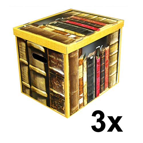 Celebration Ordnungsbox Dekobox aus Karton mit Deckel 3-er Set Motiv Books 37 x 30 x 32 cm