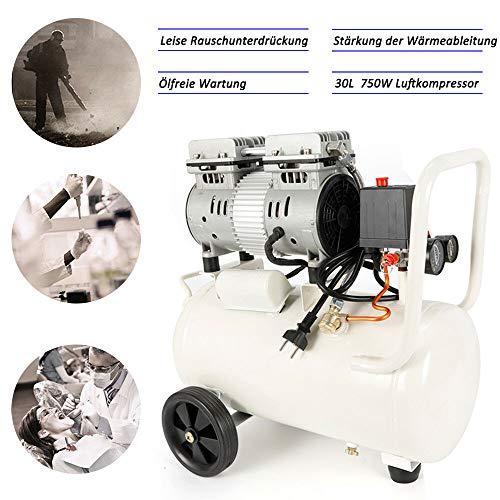 Silent Fluistercompressor HaroldDol 750W 30L persluchtcompressor ijs olievrij onderhoud compressor compressor
