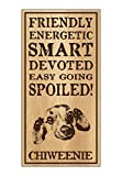 Crazy Sticker Guy Wood Dog Breed Personality Sign - Spoiled Chiweenie (Chihuahua Dachshund) - Home, Office, Décor, Decoration, Gifts