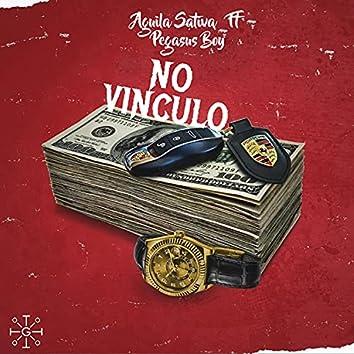 No Vinculo (feat. Pegasus Boy)