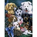 Pintura Por Numeros Diy Dog Set Painting Animal Wall Painting Decoración Para El Hogar A5(40X50Cm Sin Marco)