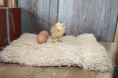 Duncans Poultry 13x13 Excelsior Nest Pads 10 Pack!!