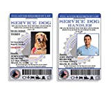XpressID Custom Holographic Service Dog ID and Handler ID | Includes Registration to National Dog Registry