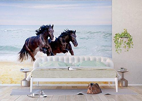 AG Design - Fototapete - Pferde - Wand Dekoration - Vlies Tapete - 360 x 270 cm – 4 teile – FTNS 1260
