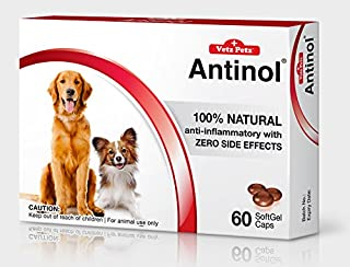 Vetz Petz Antinol 100% Natural. Healthy Joint, Skin and Cardio Vascular Maintenance.60 Caps for Dogs. by Pumkinpethouse