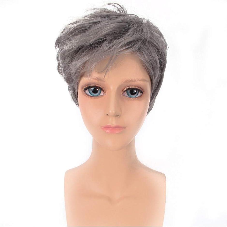 歯科医フェザーサーバントYOUQIU メンズかつらハンサムなグレー斜め前髪ショートストレートヘアウィッグ原宿COSウィッグウィッグ (色 : グレー)
