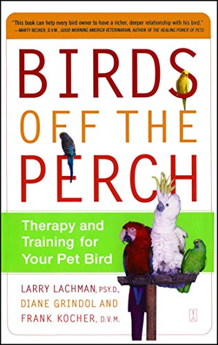 Birds Off The Perch Therapy And Training For Your Pet Bird English Edition Ebook Lachman Larry Grindol Diane Kocher Frank Amazon Fr