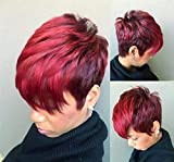 Ombre Brown Pixie Wig Short Layered Natural Synthetic...