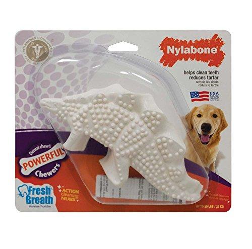 Nylabone Dura Chew Durable Dental Dinosaur Dog