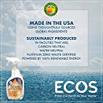 Earth Friendly Products ECOS Window Cleaner with Vinegar, 22-Ounce, Made in USA