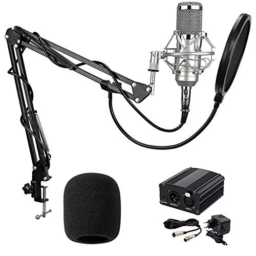 BestCare BM-800 Professional Studio Recording Condenser Microphone With Adjustable Mic Suspension Scissor Arm Stand and Shock Mount, Double-Layer Pop Filter with 48V Phantom Power Supply (Silver)