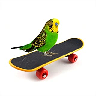 Mumoo Bear Bird Parrot toy Intelligence toy Mini Training Skateboard for Parrot Budgie Parakeet Cockatiels Intelligence Mi...